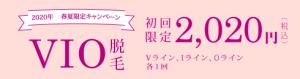 VIO特別2020円